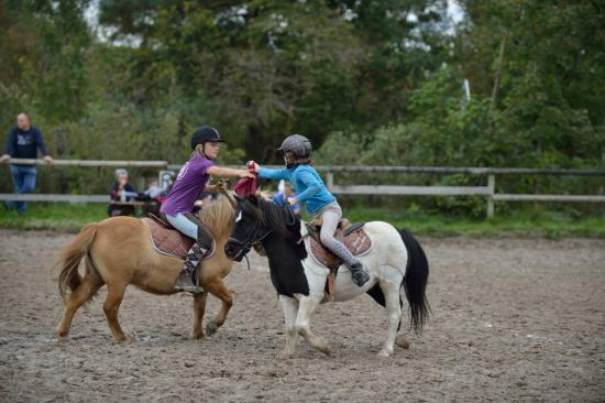 concours Pony-Games